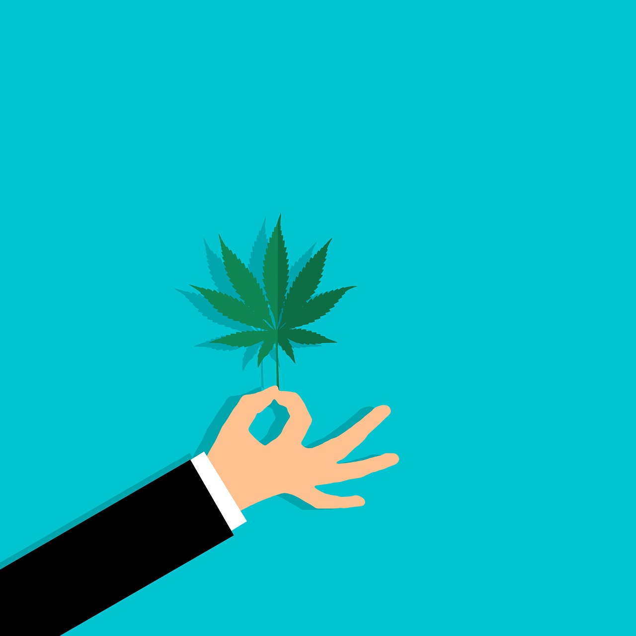 איש מחזיק צמח